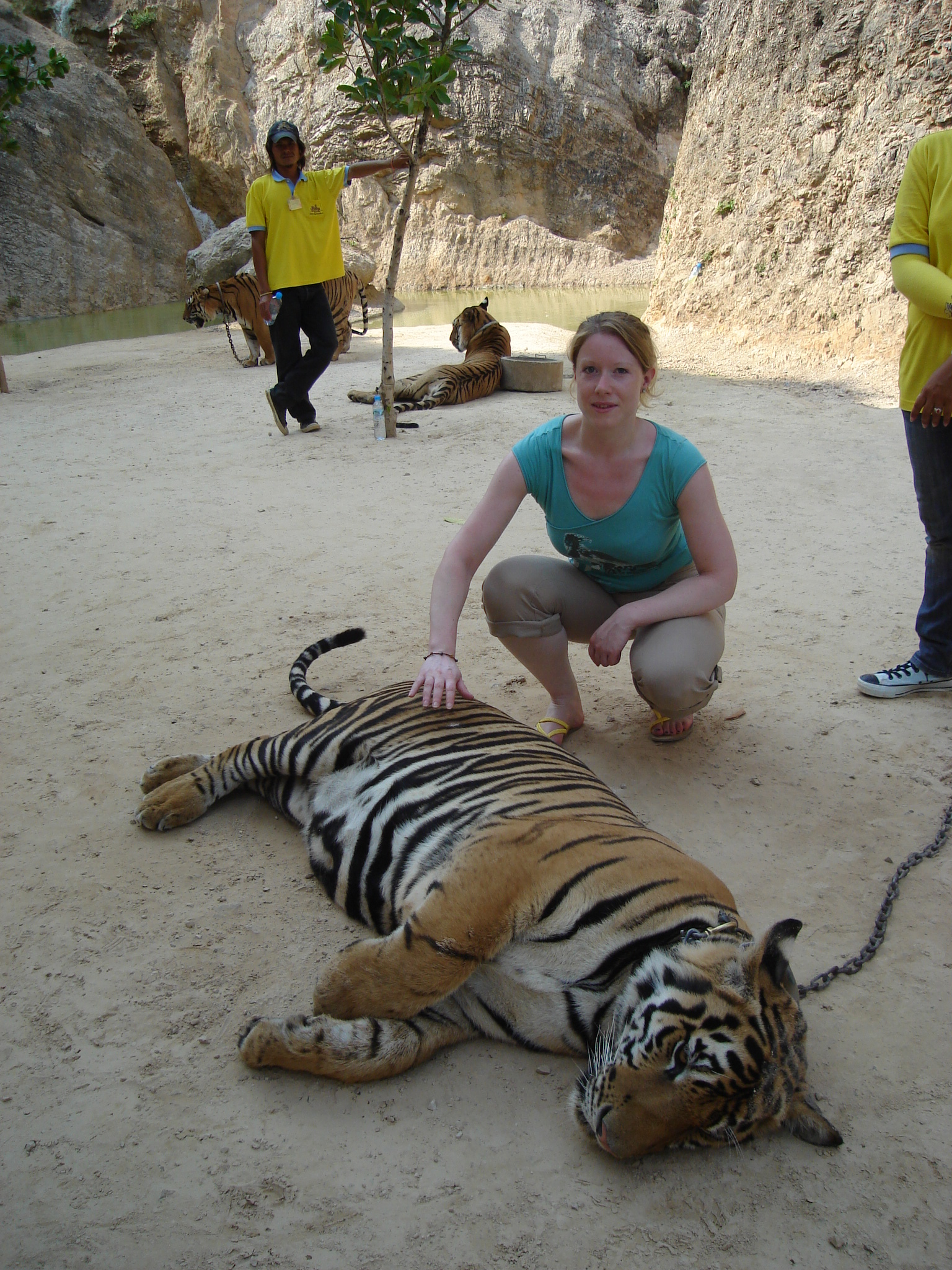 Fleur with Tiger